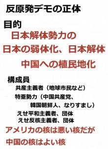 $日本人の進路-反原発デモの正体