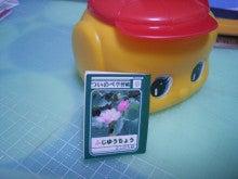 ・・・豆本・小箱 「よしの屋」・・・