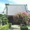 8月28日 安養寺で快慶作の阿弥陀如来を初拝観 その1の画像