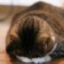 丸山圭子オフィシャルブログ「丸山圭子のそぞろ喋歩き」 Powered by アメブロ-598504_393566194011795_1988559601_n0001.jpg
