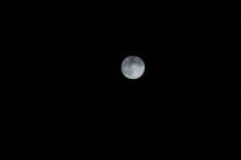 ~悠々自適なブログ~-青い月