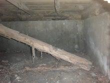 福岡市南区でのヤマトシロアリ駆除工事