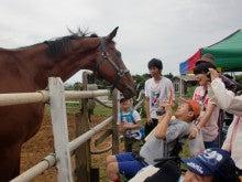 馬を愛する男のブログ Ebosikogen Horse Park-ユキにびっくり