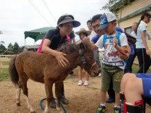 馬を愛する男のブログ Ebosikogen Horse Park-ほたるとの触れ合い