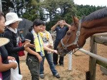 馬を愛する男のブログ Ebosikogen Horse Park-えさやり体験