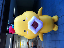 SANPUKU☆STAFFのブログ-__.JPG