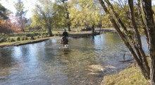 Mongolia Horse Trekking Centerのブログ