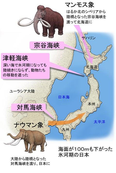 川崎悟司 オフィシャルブログ 古世界の住人 Powered by Ameba-日本に渡った象たち