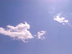 2011.5山梨2