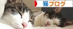 にほんブログ村 猫ブログ【猫写真】