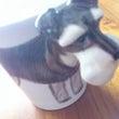マグカップ♪