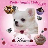 PrettyAngesClub No.173 Kurumi ちゃん