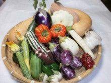 $イタリア野菜と世界の野菜・吉野ヶ里あいちゃん農園の栽培士「モリチン」の戦い!