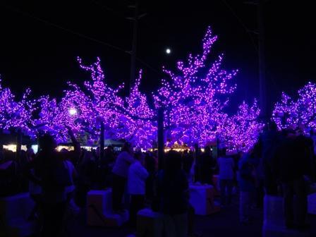 i Canada☆ベテランカウンセラーのいるバンクーバー無料現地留学エージェントのブログ-Sep 28'12 ⑦ i Canada