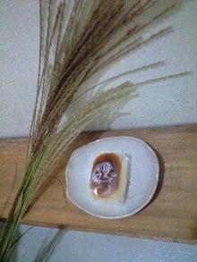 ずれずれブログ…湘南で猫と暮らせば…-120930_1454~0001.jpg