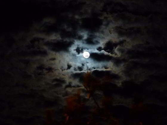 はすのやにっき-一ッ葉海岸に月を観に行きました