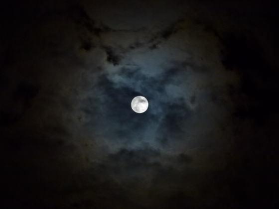はすのやにっき-雲間にのぞく月