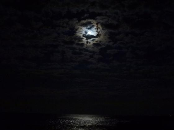 はすのやにっき-月は東からのぼります