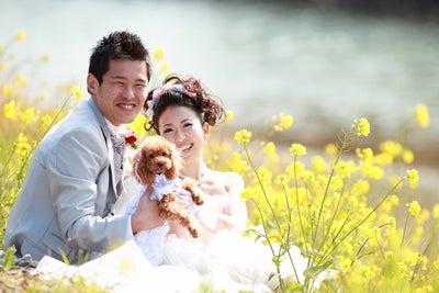 ペットと一緒にウェディングフォト★静岡の結婚式前撮り写真★大自然のウェディングフォト★ 大自然のウェディングフォト撮影のお店