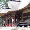 三羽のうさぎ 赤湯 熊野大社の画像