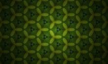 薪坂史柳の日常サハンジー-植物