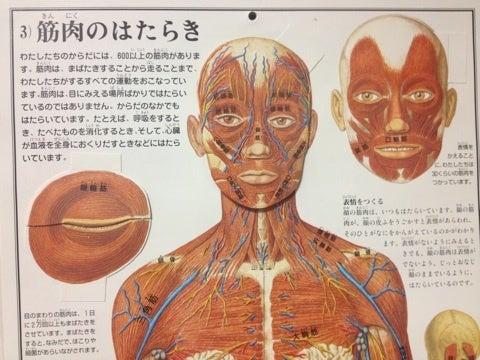 名古屋駅トータルエステ美白口コミサロン アジュール-image