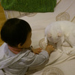 続.赤ちゃんと猫