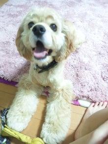 中川杏奈オフィシャルブログ「幸せブログ」Powered by Ameba-DVC00713.jpg