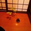 盆栽入門 「おひょう」の画像