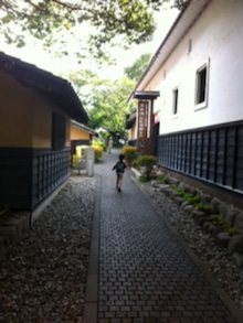 $徒然日記-obuse2012