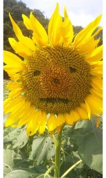 空と花と猫...-SH3J1823.jpg