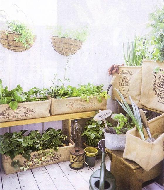 庭やベランダでおうち菜園を楽しもう!自然にやさしいジュートプランター〈浅型〉の会