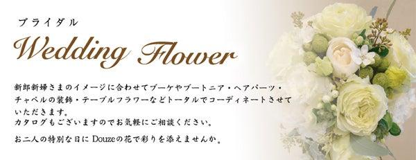 DOUZE心斎橋 anemone日記-weddingbn