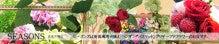 SEASONS ~絵画のようなお庭を作りたい~