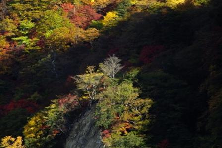 華厳の滝観曝台からの華厳渓谷