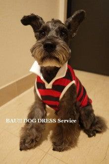 BAU!! DOG DRESS Serviceのブログ