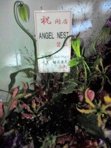 下北沢の沖縄風超癒し系美容室Actのブログ