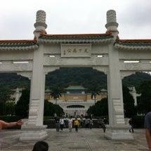 台湾の白菜