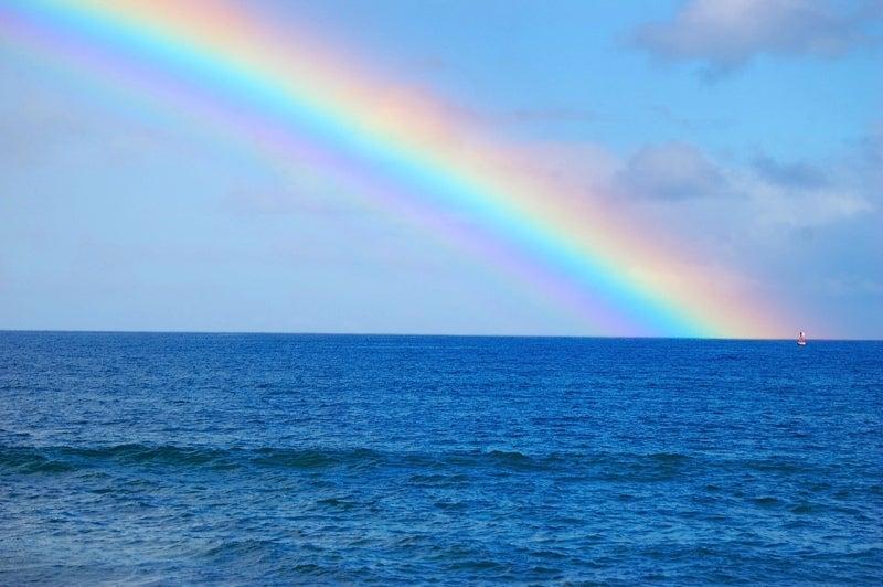Emikoのアロハ!海ニュース~ハワイ・オアフ島ノースショア専門情報ガイド!AD-NORTHSHORE.com