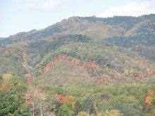 ほべつの森のこばなし帳-紅葉の縁取り