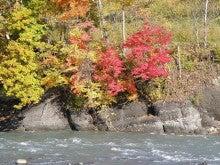 ほべつの森のこばなし帳-川岸の紅葉