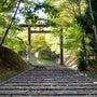 【紅葉】円山公園その…