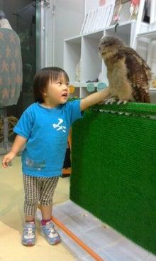 フクロウのみせのブログ-picsay-1351595172.jpg