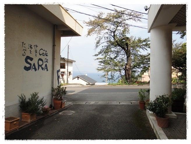 犬旅コンサルタントMiwaのブログ-COTE DE SARA