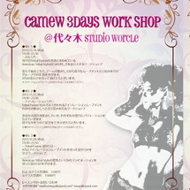 Camew 3day…