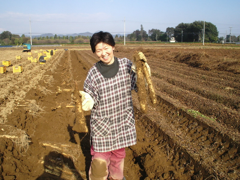 大和芋 シゲオ農園-24年度産大和芋