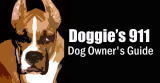 Doggies911 LA Staff