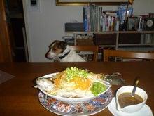 Fan!のブログ-魚