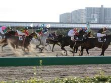 タノシンジョイ!-20121102船橋8R_19