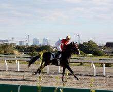 タノシンジョイ!-20121102船橋8R_11